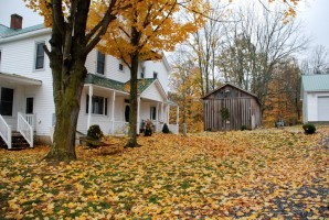 Fall at Willow Bend